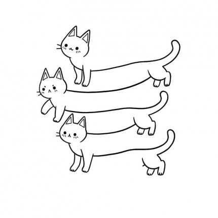 Illusion Of Cats