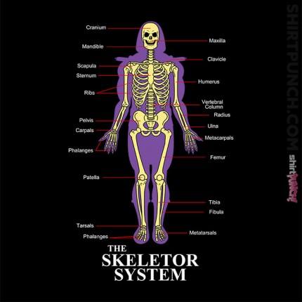 The Skeletor System