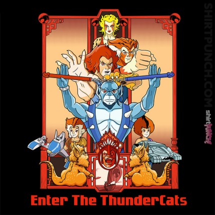 Enter The Thundercats