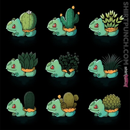 Bulba Succulents