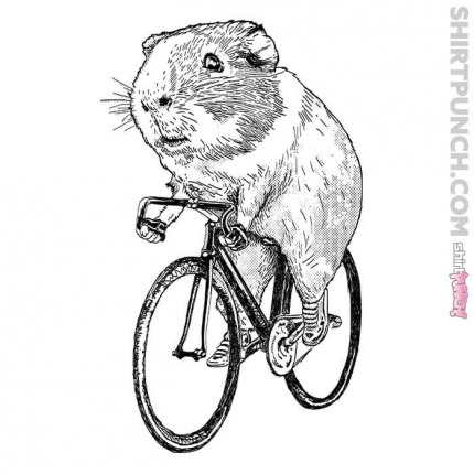 Guinea Pig Wheels