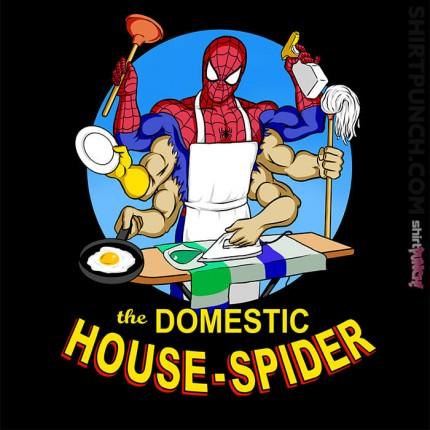 Domestic Spider